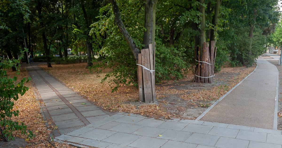 III.3. Повече квартални паркове и градини