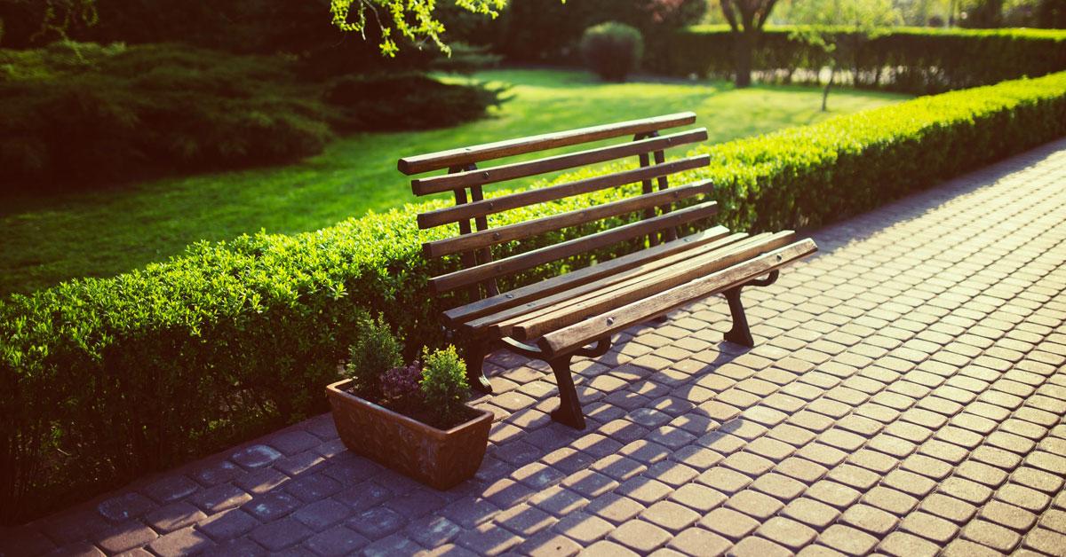 III.1. Защита на Южния и изпълнение на планираните паркове